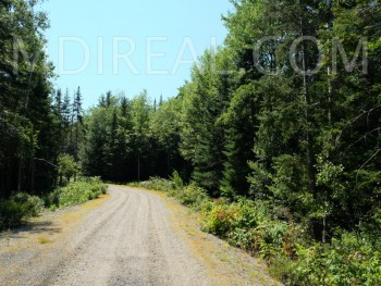 Silent Stream Way//BEAUTIFUL LAND PARCEL CENTRALLY LOCATED!!!